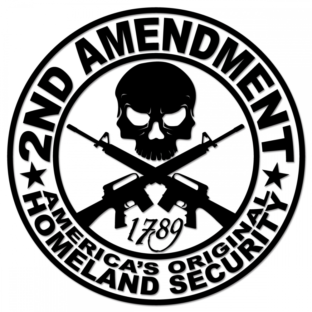2nd amendment ar15 americas original homeland security vinyl buycottarizona